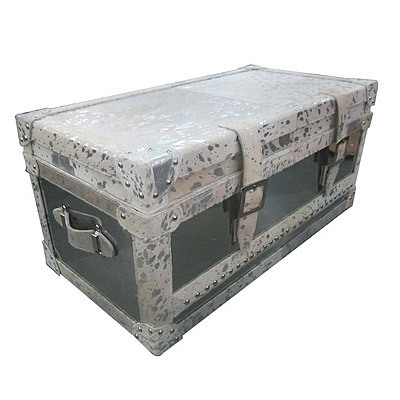 Hazenkamp INDUSTRIAL * Trunk small 80x40x36 cm (silver foil hair on)