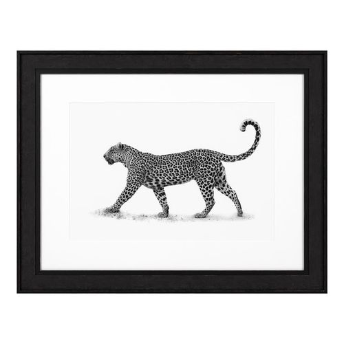 Eichholtz Print The Leopard * Black wooden frame | clear glass