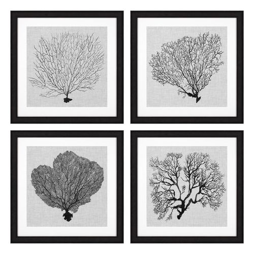 Eichholtz Prints Shadow Sea Fans set of 4 * Black wooden frame | clear glass